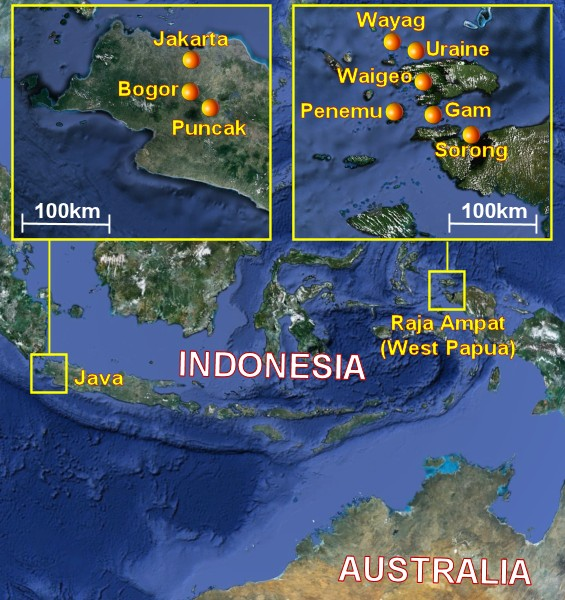 Suggested cruise itinerary in Indonesia